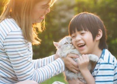 4 lý do khiến bạn muốn sở hữu một bé mèo ngay lập tức!